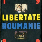 Jerome Fritel, Libertate Roumanie