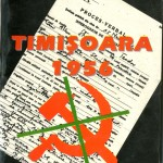 Mihaela Sitariu, Rezistenta anticomunista