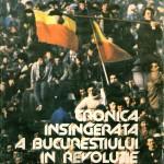 Stefan Mitroi, Cronica insangerata..