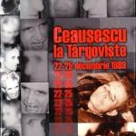 Viorel Domenico, Ceausescu..